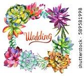 wildflower succulentus flower... | Shutterstock . vector #589581998