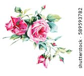 Stock photo watercolor roses bunch of roses on the white background 589593782