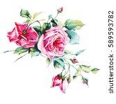 watercolor roses   bunch of...   Shutterstock . vector #589593782