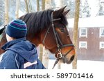 Muzzle Of Horse In Winter With...