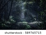 a straight and long path... | Shutterstock . vector #589765715
