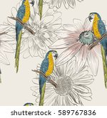 vector sketch of a parrot with... | Shutterstock .eps vector #589767836