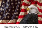 american bald eagle   symbol of ... | Shutterstock . vector #589791146