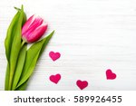 Tulip Flower Small Hearts On...