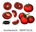 tomato drawing set. isolated... | Shutterstock . vector #589973216