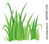 grass icon. cartoon... | Shutterstock . vector #589987196