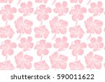 hibiscus flowers on white... | Shutterstock . vector #590011622