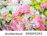 Stock photo colorful roses 590095292