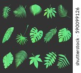 set of multicolored  tropical... | Shutterstock .eps vector #590099126