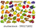 vector illustration of sticker... | Shutterstock .eps vector #590171852