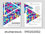 abstract vector layout... | Shutterstock .eps vector #590202002