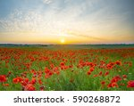 sunset over poppy meadow | Shutterstock . vector #590268872