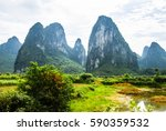the karst mountains and rural... | Shutterstock . vector #590359532