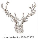 Portrait Of Deer  Freehand...