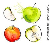 apples painted with watercolors ... | Shutterstock . vector #590466542