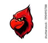 cardinal bird isolated cartoon...
