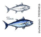 tuna fish isolated sketch....