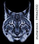 lynx head wild cat predator .... | Shutterstock . vector #590662532