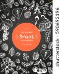 berries hand drawn vector... | Shutterstock .eps vector #590692196