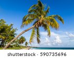 one of the beautiful stretches...   Shutterstock . vector #590735696