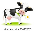 Little Black And White Cow...