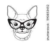 vector dog in stylish glasses.... | Shutterstock .eps vector #590853452