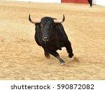 bull   Shutterstock . vector #590872082