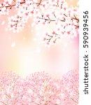 cherry spring flower background | Shutterstock .eps vector #590939456
