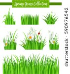 floral border set with green... | Shutterstock .eps vector #590976542