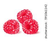 appetizing fresh raspberry... | Shutterstock .eps vector #591061142