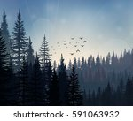 vector illustration of pine... | Shutterstock .eps vector #591063932