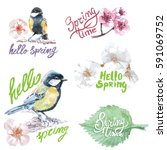 springtime birds and text a...   Shutterstock .eps vector #591069752