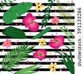 beautiful green botanical... | Shutterstock .eps vector #591133286