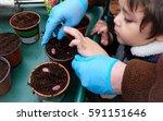 Kid Planting Seeds In A Brown...