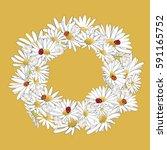 beautiful white daisies wreath... | Shutterstock .eps vector #591165752