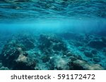 Underwater Sea Surface Clear...