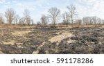 wasteland after fire... | Shutterstock . vector #591178286