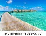 beautiful water villas in... | Shutterstock . vector #591193772