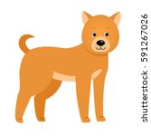 dog. illustration for children. ... | Shutterstock .eps vector #591267026