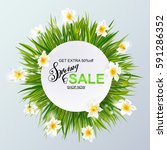 advertisement about the spring... | Shutterstock .eps vector #591286352
