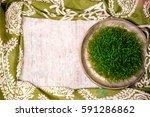 traditional fresh green grass... | Shutterstock . vector #591286862