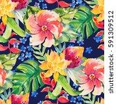 watercolor floral botanical... | Shutterstock . vector #591309512