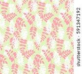 vector stylised flower colorful ... | Shutterstock .eps vector #591347192