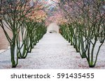 park. vaduz  liechtenstein. | Shutterstock . vector #591435455