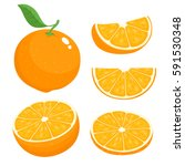 bright vector set of colorful... | Shutterstock .eps vector #591530348