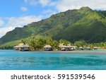 luxury thatched roof bungalows... | Shutterstock . vector #591539546