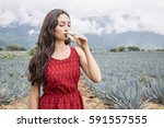 mexican woman drinking tequila... | Shutterstock . vector #591557555