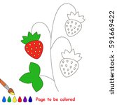 small red wild strawberry  the... | Shutterstock .eps vector #591669422