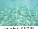 clean blue sea and sunlight... | Shutterstock . vector #591765782
