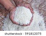 jasmine rice in the hands of... | Shutterstock . vector #591812075